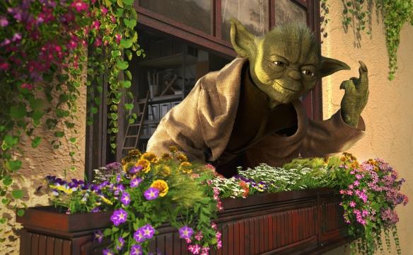 Yoda Flipoff